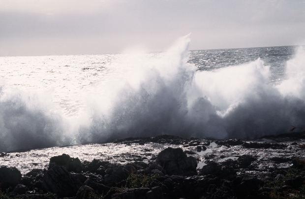 津波のメカニズム